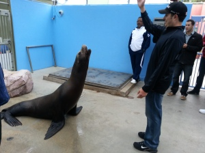 "Trainer Carlos Olivas makes Dylan yell. One of the sea lions here was used as the ""voice"" of the T-Rex in the Jurassic Park movies."