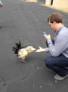 Pitcher Josh Lindbloom feeding a chicken, not too many places have this kind of access (Courtesy of
