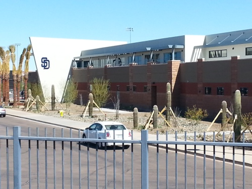 The Padres' office in Peoria. Apparently their cacti need a stringent support system.